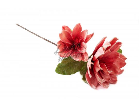 Květina  dekorativní