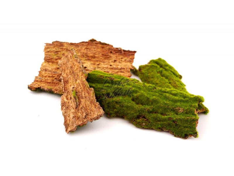 Umělý mech na dřevě