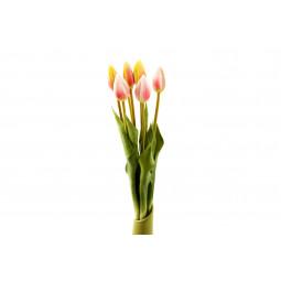 Svazek tulipánů, 7 ks