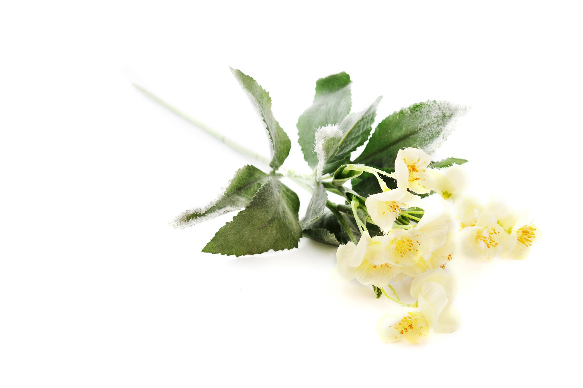 Zimní květina, 55 cm