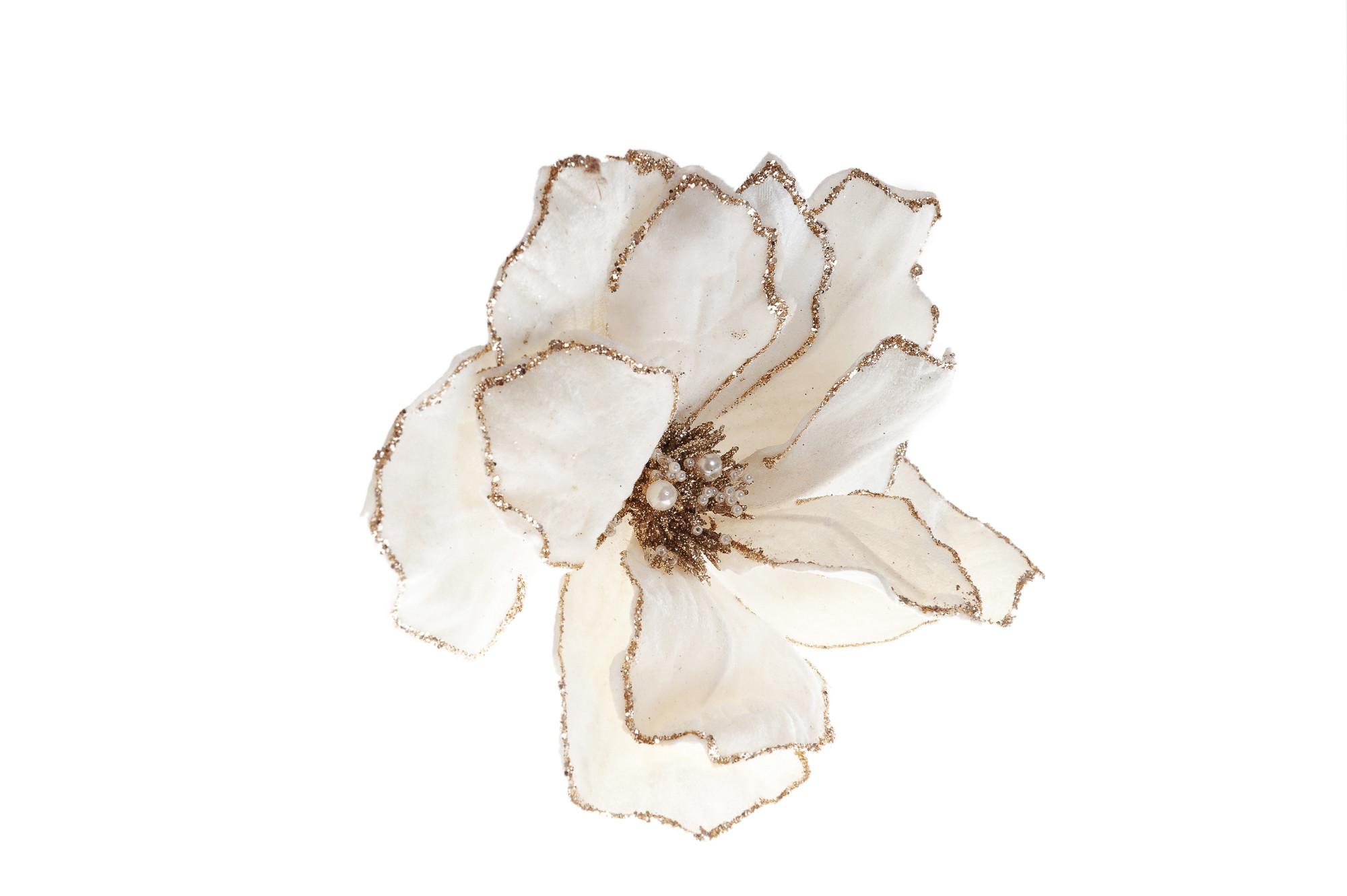 Sametový květ